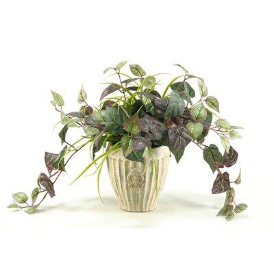 D & W Silks Oxalis Ivy Floor Plant in Decorative Vase