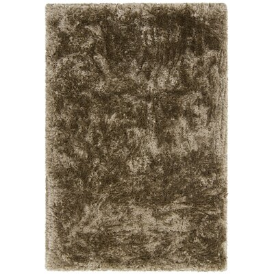 Giulia Textured Contemporary Shag Brown Area Rug by Chandra