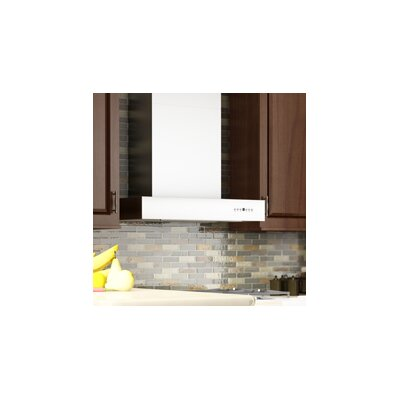 "48"" 1200 CFM Wall Mount Range Hood Product Photo"