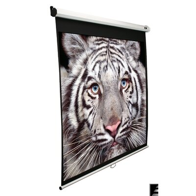 Elite Screens Elite Screens Manual, 80-inch 4:3, Pull Down Projection Manual Projector Screen with Auto Lock