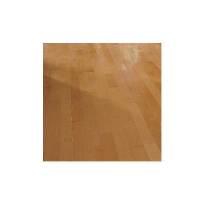 "Forest Valley Flooring 3-1/4"" Solid Light Maple Hardwood Flooring in Caramel"