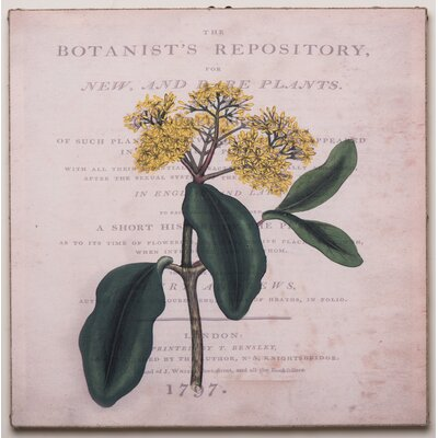 Botanist's Repository Two Vintage Advertisement on Canvas by Elizabeth Lucas Company