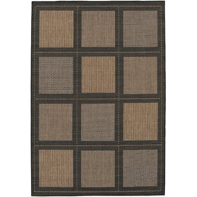 Recife Summit Black Cocoa Indoor/Outdoor Area Rug by Couristan