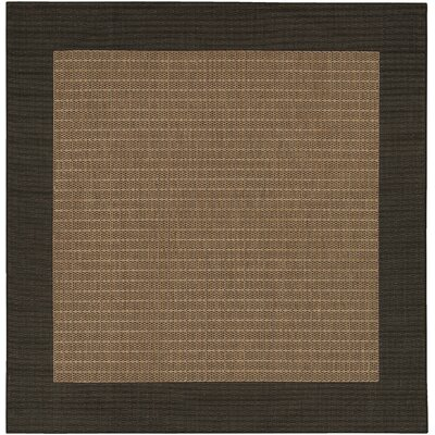 Recife Checkered Field Cocoa/Black Indoor/Outdoor Area Rug by Couristan