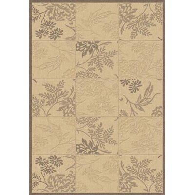 Dynamic Rugs Piazza Brentwood Natural/Brown Area Rug