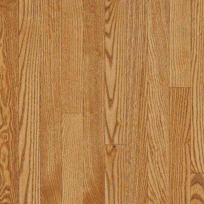 "Bruce Flooring Dundee 3-1/4"" Solid White Oak Hardwood Flooring in Spice"
