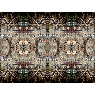 Limited Edition 'Skyland Tapestry' by David Eubank Graphic Art on Canvas by Zatista