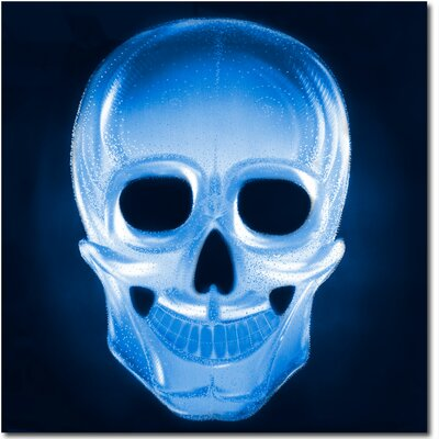 Neon Skull Metal Graphic Art in Blue by MetalArtscape