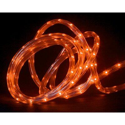 Indoor/Outdoor Christmas Linear Tape Light by NorthlightSeasonal