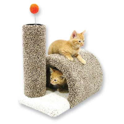 17 Kitty Barn Cat Condo Wayfair