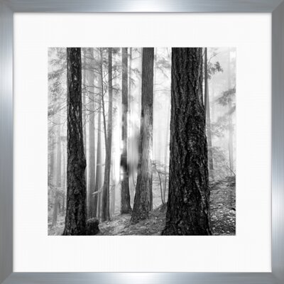 Framed Photographic Print by Darby Home Co