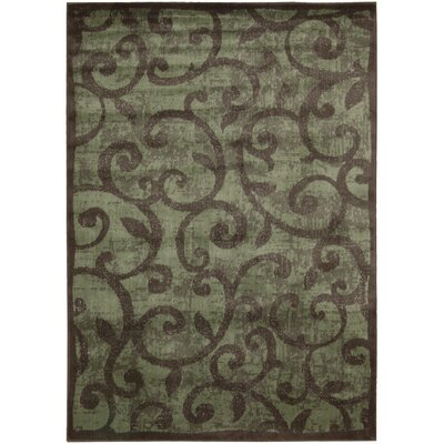 Expressions Brown Area Rug by Nourison