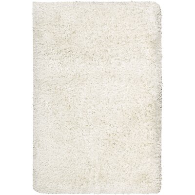 Stylebright White Area Rug by Nourison