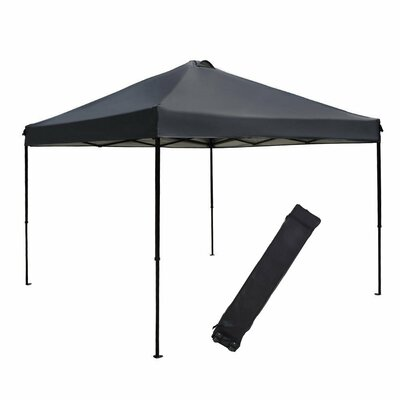 10 Ft. W x 10 Ft. D Canopy by Abba Patio