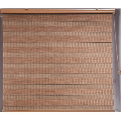 Zebra Blackout Striped Roller Shade Product Photo