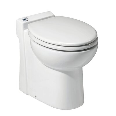 1 Piece Toilet Product Photo