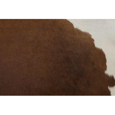 Brown/White Regular Area Rug by Saddlemans