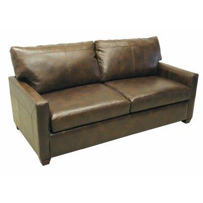 Sleeper Sofa with 5