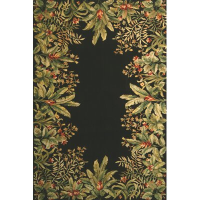 Emerald Black/Green Tropical Border Area Rug by KAS Rugs