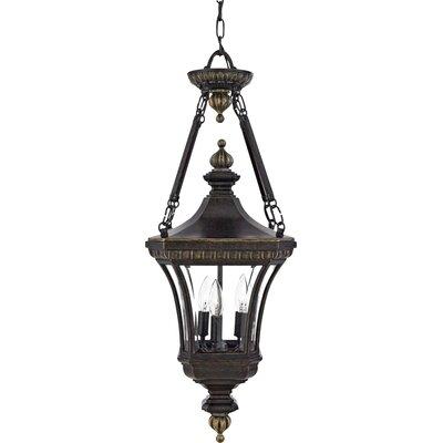 Quoizel Devon 3 Light Outdoor Hanging Lantern