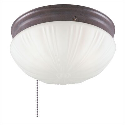 Flush Mount by Westinghouse Lighting