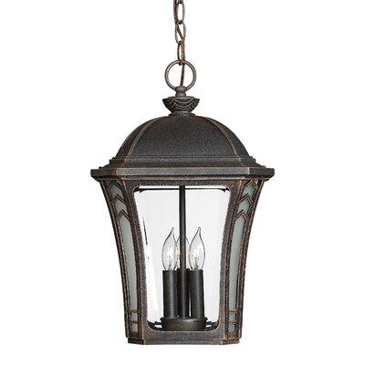 Hinkley Lighting Wabash 3 Light Outdoor Hanging Lantern