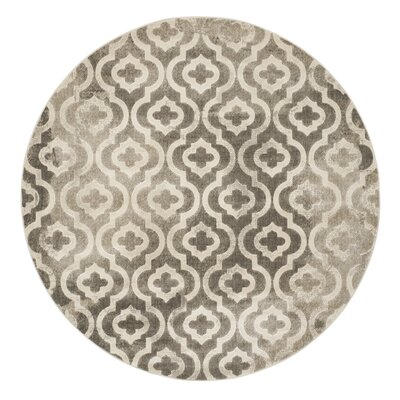 Porcello Grey / Ivory Area Rug by Safavieh