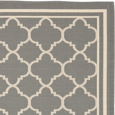 Safavieh Courtyard Anthracite & Beige Indoor/Outdoor Area Rug CY6918 246