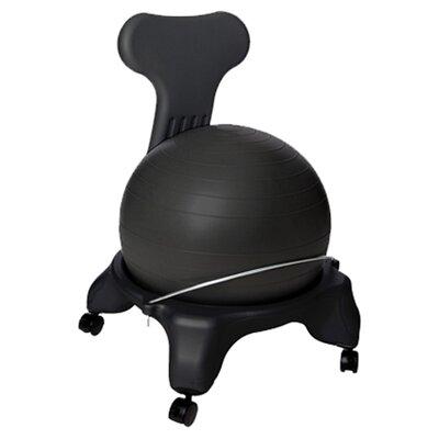 AeroMAT Exercise Ball Chair & Reviews