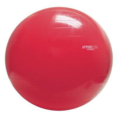 "Gymnic 34"" Inflatable Exercise Ball"