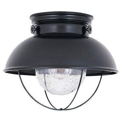 Sebring 1 Light Flush Mount Product Photo