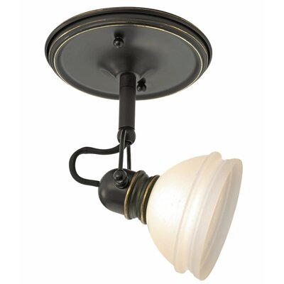 Ambiance Transitions 1 Light Monopoint Track Light Product Photo