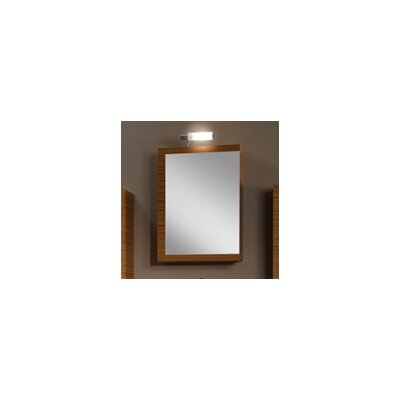 """Luna 20.6"""" x 27.7"""" Surface Mounted Medicine Cabinet Product Photo"""