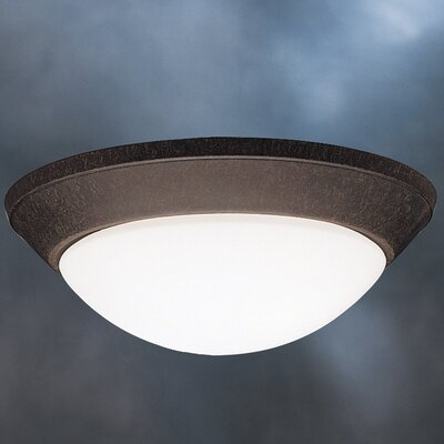 Ceiling Space 2 Light Flush Mount Product Photo