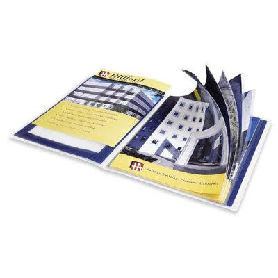 """Avery Consumer Products Presentation Books, 12 Pages, 9-1/2""""x11-1/2"""", Blue"""