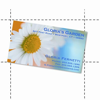 GEOGRAPHICS Laser/Inkjet Business Cards, 2 x 3-1/2, White, 10 per Sheet, 350 Cards per Pack
