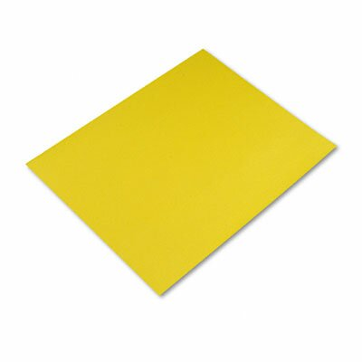 Pacon Corporation Four-Ply Poster Board, 28 X 22, 25/Carton
