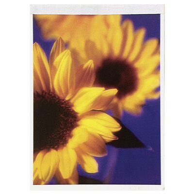 "Mead 5.77"" x 5.88"" Floral Tablet"