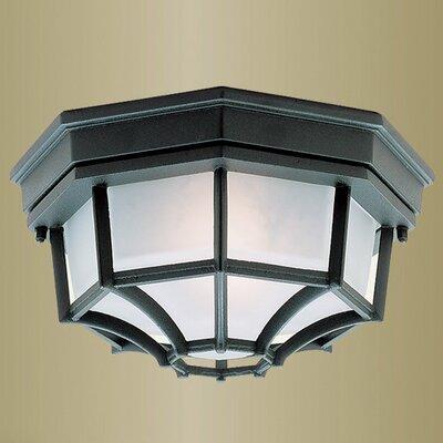 Outdoor Basics 1 Light Flush Mount Product Photo