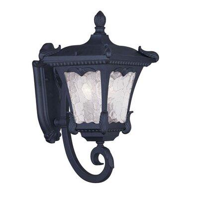 Livex Lighting Millstone 2 Light Wall Lantern