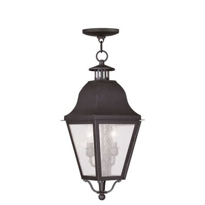Livex Lighting Amwell 2 Light Outdoor Hanging Lantern
