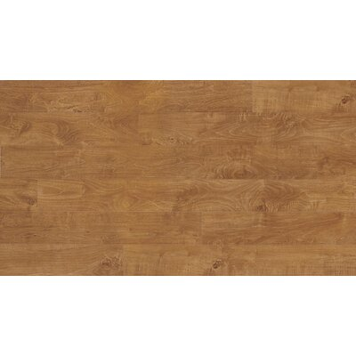 "Quick-Step Veresque 5"" x 47"" x 8mm Maple Laminate in Varnished Bay Maple"