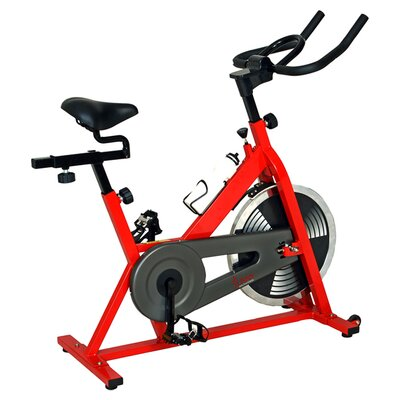 Sunny Health & Fitness Indoor Cycling Bike in Red
