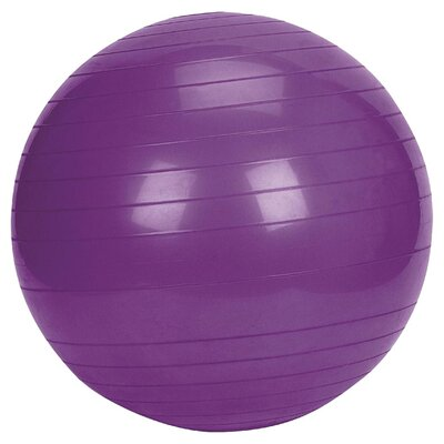 Sunny Health & Fitness Exercise Ball
