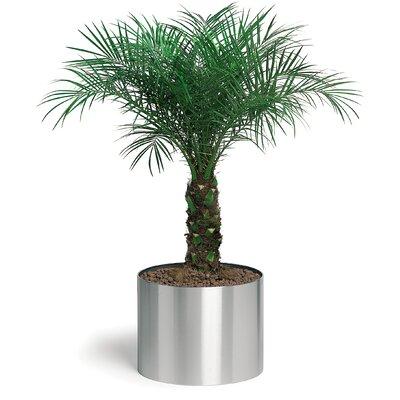 Blomus Greens Round  Pot Planter