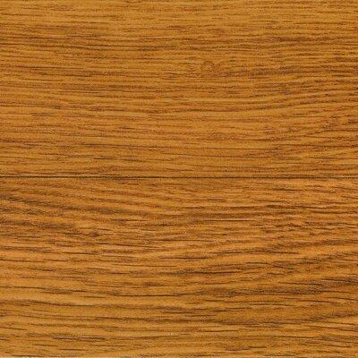 "Columbia Flooring Clic Xtra 6"" x 54"" x 8mm Oak Laminate in Berry Hill Oak Wheat"