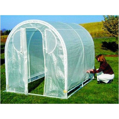 Weatherguard 8 Ft. W x 8 Ft. D Polyethylene Greenhouse by Jewett Cameron