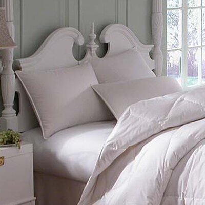 Astra Medium Innofil Pillow by Downright