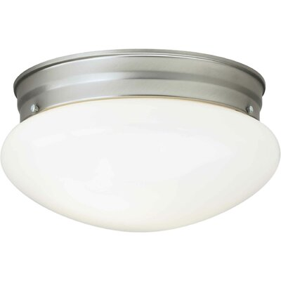 2 Light Opal Flush Mount by Forte Lighting