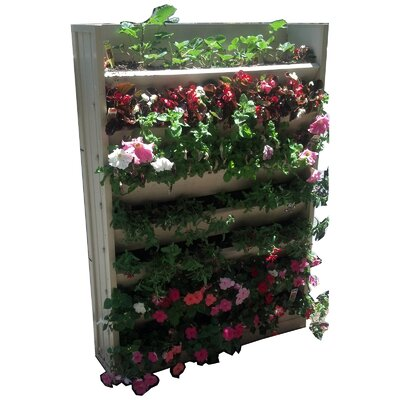 New Age Garden Novelty Wall Planter